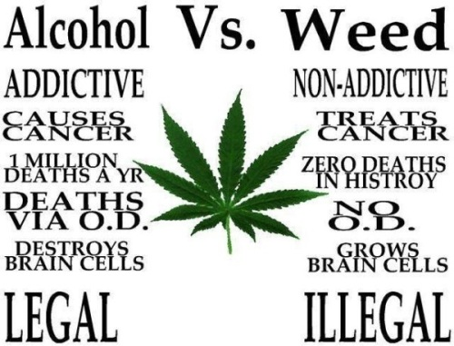 weedalcohol